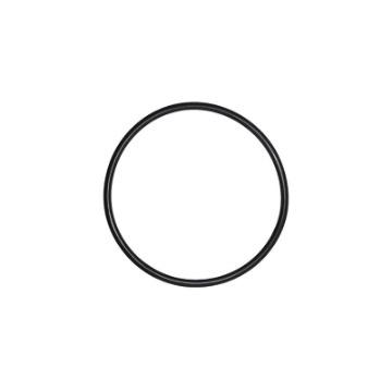 O'Ring Filtro de Óleo G650GS