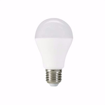 Lampada LED BULBO 12W