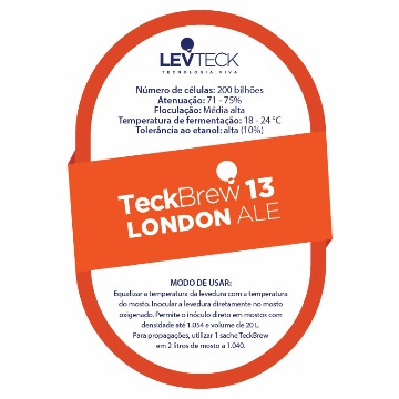 FERMENTO TECKBREW 13 LONDON ALE - SACHE