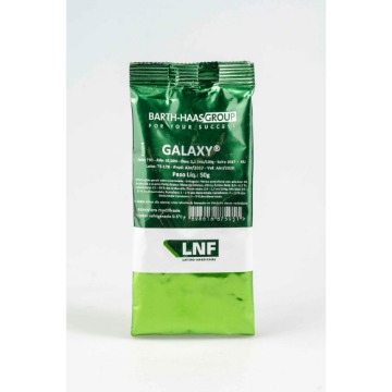 LUPULO GALAXY 13,4% A.A. SAFRA 2019 BARTH-HAAS 50g