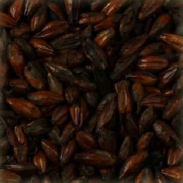 MALTE CHATEAU BLACK BELGA (ESCURO) - 100G