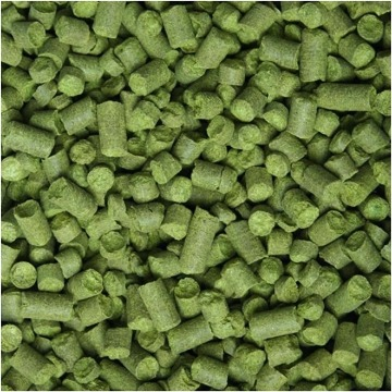 LUPULO NELSON SAUVIN PELLET 11,3% A.A. - 10G