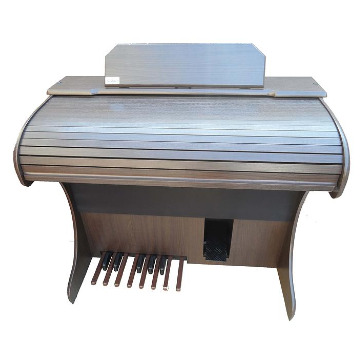 Órgão Eletrônico Rohnes - Modelo Liz Plus