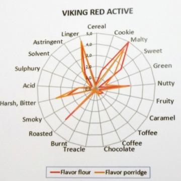 Malte Red Active Viking 30-40 EBC - similar Red X