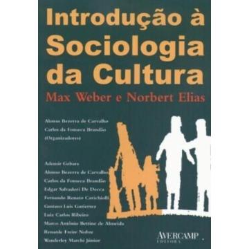 Introdução À Sociologia da Cultura
