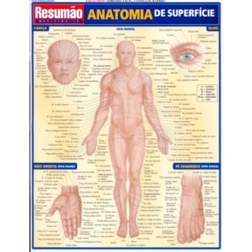 Anatomia de Superfície Resumão
