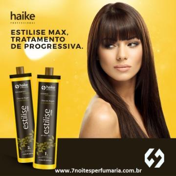 HAIKE PROGRESSIVA ESTILISE MAX 2 x 1L