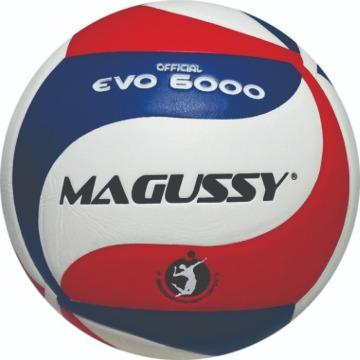 Bola Volei EVO 6000