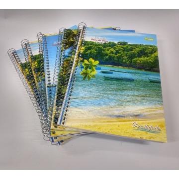 Caderno Espiral 1/4 Flex 48fls Brasilidade