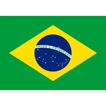 BANDEIRA DO BRASIL TORCIDA 45CM X 70CM