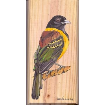 Corocoxó - arte em madeira Bio & Mãe Terra