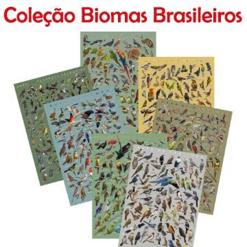 PÔSTER COLEÇÃO BIOMAS BRASILEIROS - PROMOÇÃO SETE UNIDADES