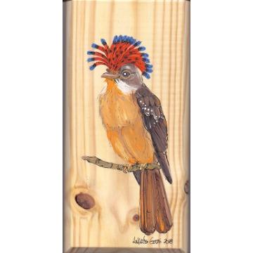 Maria-leque-do-sudeste - arte em madeira Bio & Mãe Terra