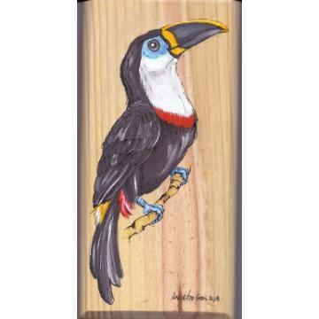 Tucano-de-bico-preto - arte em madeira Bio & Mãe Terra