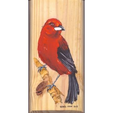 Tiê-sangue - arte em madeira Bio & Mãe Terra