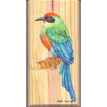 Juruva - arte em madeira Bio & Mãe Terra