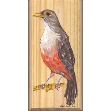 Sabiá-laranjeira - arte em madeira Bio & Mãe Terra