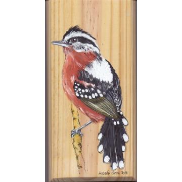 Trovoada - arte em madeira Bio & Mãe Terra