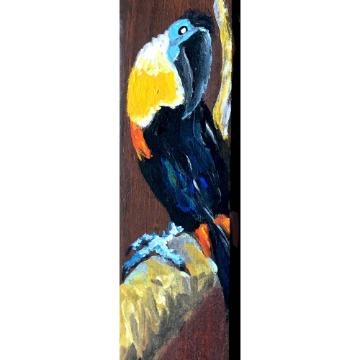 Tucano-de-bico-preto - taco de madeira