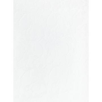 Renda – R1 – Branca - Termodinamico - Fast Patch