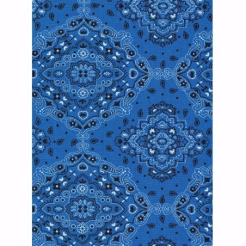 Tecido – E517 - Bandana Azul - Termodinamico Fast Patch